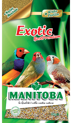 Exotic Best premium (con NectarManitoba)