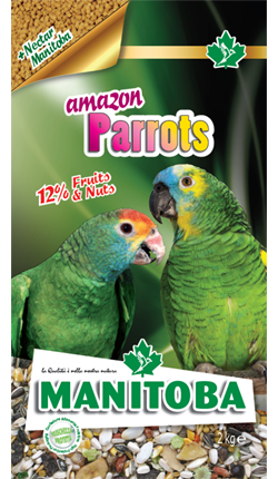 Amazon Parrots (con NectarManitoba)
